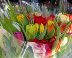 Empaques para bouquets